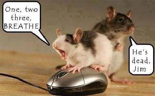 Mouse rescue